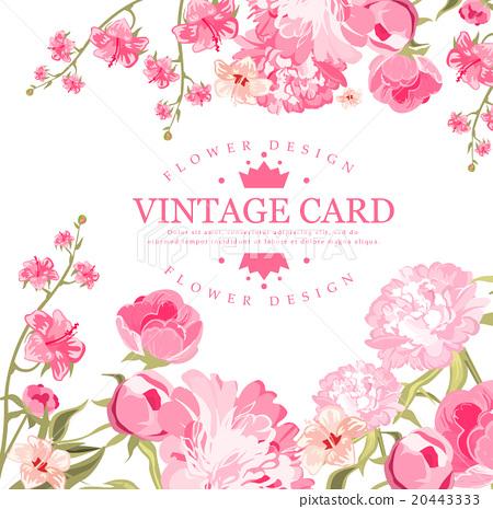 Vintage Flower Card Vector Illustration 插圖素材 20443333