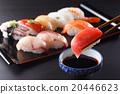 壽司 壽司球 和食 20446623