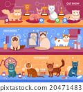 Cats banner set 20471483