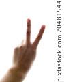 hand 01 20481544