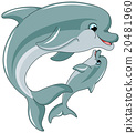 Swimming Dolphins 20481960