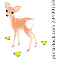 動物 鹿 孩子 20499159