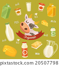 Dairy products on wooden table, milk, vector icon 20507798