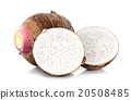Close up taro isolated on the white background 20508485