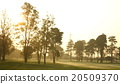 beautiful golf course 20509370