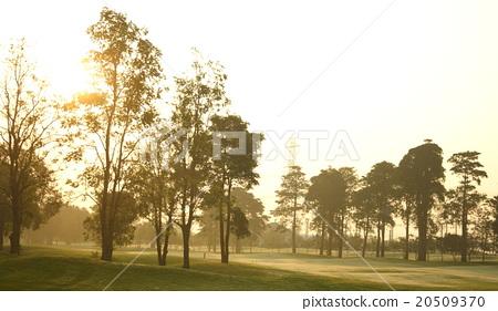 beautiful golf course 20509370