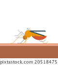 Mosquito bites skin 20518475