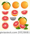 Set of grapefruit with leaf in vector 20526681