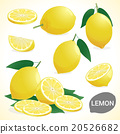Set of lemon in various styles vector format 20526682