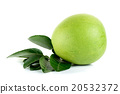 Fresh pomelo isolated on the white background 20532372