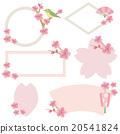 樱花 樱桃树 框架 20541824