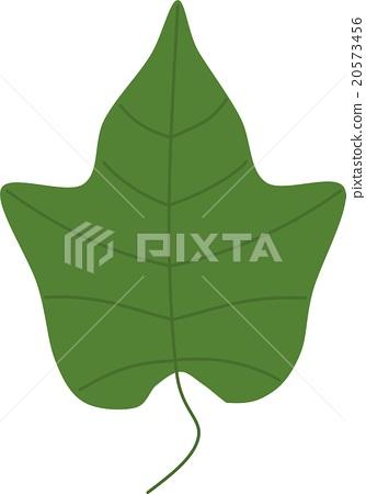 잎 20573456