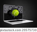 tennis ball destroy laptop 20575730