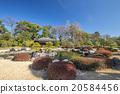 landscaping, pond, lagoon 20584456
