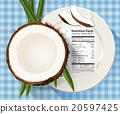 Vector of Nutrition facts in coconut  20597425