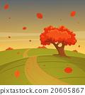 Autumn Landscape 20605867