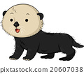 Cute Sea Otter 20607038