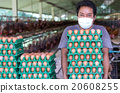 Young Farmer holding the egg trays on the egg chicken farm after 20608255