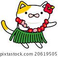 貓咪 跳舞 舞蹈 20619505