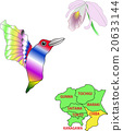 Animals of the map One city six prefectures Chiba hummingbird Ⅱ 20633144