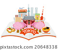 japan, sightseeing, vector 20648338
