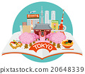 japan, sightseeing, vector 20648339