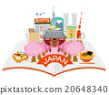 japan, sightseeing, vector 20648340