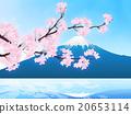 벚꽃 눈보라 20653114