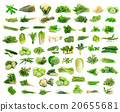 Vegetables collection isolated on white background 20655681
