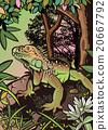 鬣蜥蜴 撫養 生育 20667792