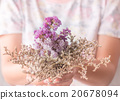 Hand on beautiful dried flower 20678094