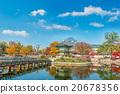 Autumn in Gyeongbukgung Palace,Korea. 20678356