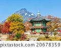 Gyeongbokgung Palace in autumn,South Korea. 20678359