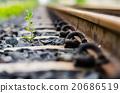 Railway and plant 20686519