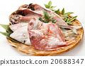 dried fish, Marine Product, seafood 20688347