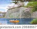 Tourism cruising watch spring cherry blossoms  20688667