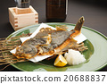右偏比目魚 油炸食品 和食 20688837