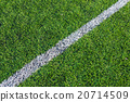 White line on the green soccer field 20714509