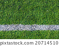 White line on the green soccer field 20714510