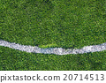 White line on the green soccer field 20714513