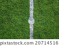 White line on the green soccer field 20714516