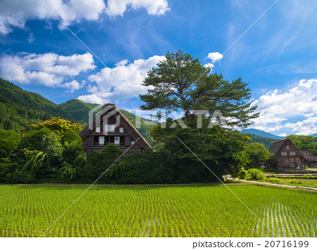 Gassho-housest house 20716199