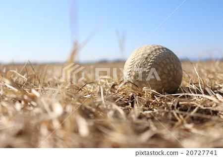 Baseball Ball 20727741