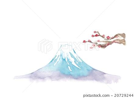 富士山 梅花 梅 20729244