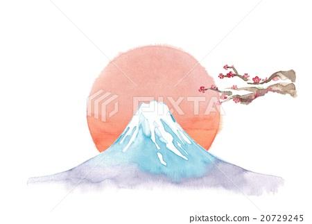 富士山 梅花 梅 20729245