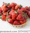 草莓 水果 春天 20743927