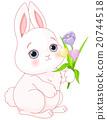 Bunny & Flowers 20744518