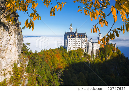 Neuschwanstein castle in Bavaria, Germany 20747635
