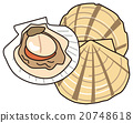illustration, vector, vectors 20748618