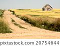 Rural Saskatchewan 20754644